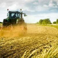 Coldiretti: continua l'emorragia di suolo agricolo in 30 anni in Calabria ne è scomparso ¼