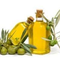 Marchio Olio Grecanico della Calabria: piccole economie locali fanno rete