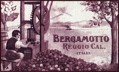 Etichetta_1800_bergamotto_reggio_calabria