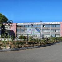 """Al liceo Volta i primi dati di monitoraggio del progetto """"Cittadinanza attiva"""""""