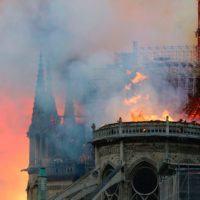 """Incendio Notre Dame, la prof.ssa Nava: """"Servono conoscenze e buon senso. Non abbiamo scuse"""""""
