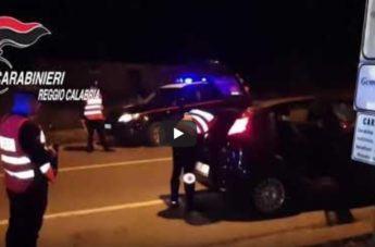 Sequestrata piantagione di marijuana in provincia di Reggio: il video degli arresti