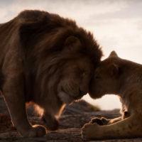 Lacrime e ricordi. Dopo 25 anni 'Il Re leone' torna al cinema