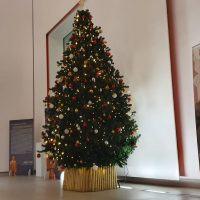 Reggio, ricco calendario di appuntamenti di Natale al MArRC