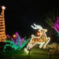 'Concerti di Natale', al via la rassegna a Reggio Calabria