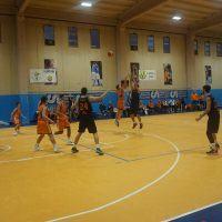 La Pallacanestro Viola travolge la Scuola Basket al Palacolor