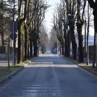 Coronavirus, da Reggio in Lombardia. Giovanna a CityNow: 'Qui la gente inizia ad impazzire'