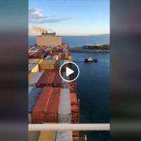Porto di Gioia Tauro, arrivata una delle portacontainer più grandi al mondo