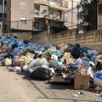 Reggio, prosegue la raccolta straordinaria dei rifiuti. Ma il rischio è che sia tutto inutile - FOTO