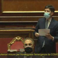 Vaccino Covid, l'annuncio di Speranza in Senato: 'Sarà gratuito per tutti gli italiani'