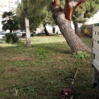 Reggio, 'Innamorarsi di Sbarre' riqualifica la villetta di via Botteghelle