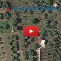 Colti di sorpresa mentre raccoglievano le olive: la ricostruzione del duplice omicidio di Calanna
