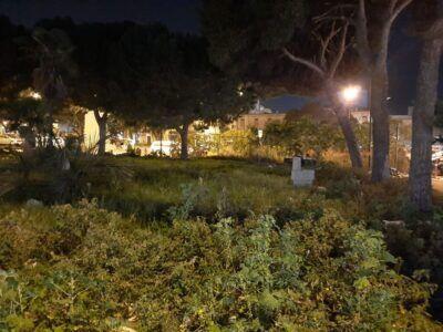 Erbacce Piazza Garibaldi 2