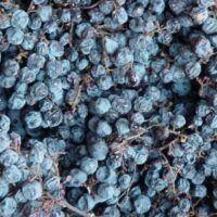 CityWine - Cosa sono i vini passiti secchi?