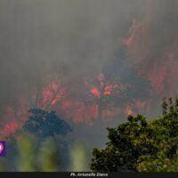 Incubo incendi nel reggino: disposte evacuazioni della popolazione in due Comuni. Il bollettino