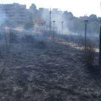 Reggio, a fuoco il Parco De Sena: paura e rabbia tra i residenti - FOTO